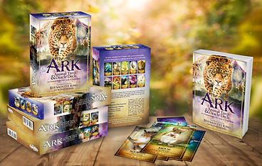 The Ark Animal Tarot & Oracle Deck 1.JPG