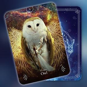 Divine Animals Oracle 3.jpg