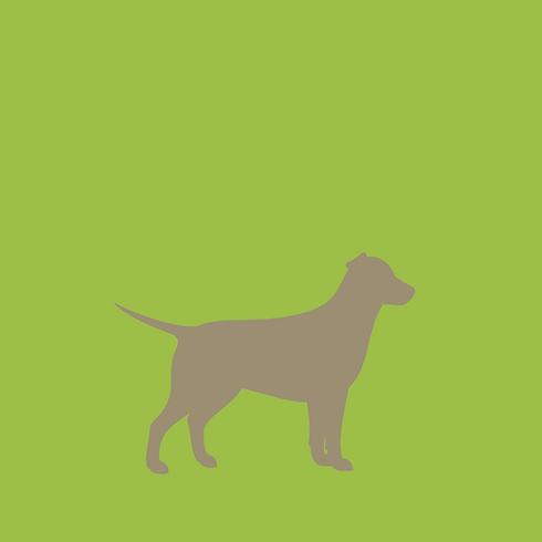 Sachkundenachweise für Hunde in NRW und Niedersachsen