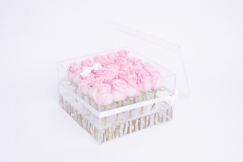 Aqua Fairy -25 Light Pink Roses