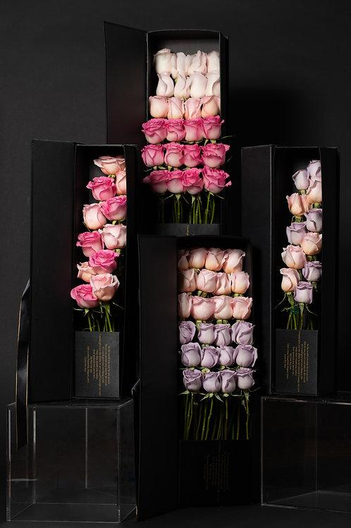 Fairy Bloom Desire