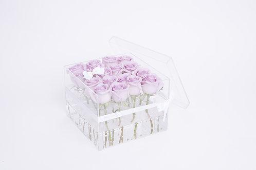 Aqua Fairy -16 Violet Roses