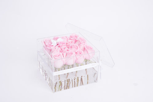 Aqua Fairy -16 Light Pink Roses