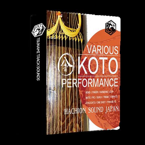KOTO-13弦-