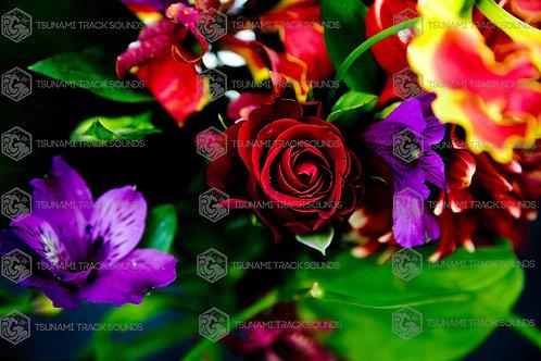 R-Flowers (Joji Shimamoto)