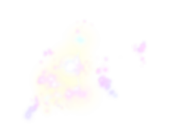 Star-PNG-Picture_edited.png