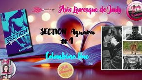 Section Aguara - Colombine Huc