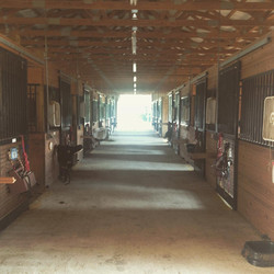 TRRC Barn Photo