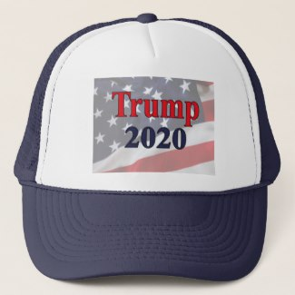 Trump 2020 ball cap