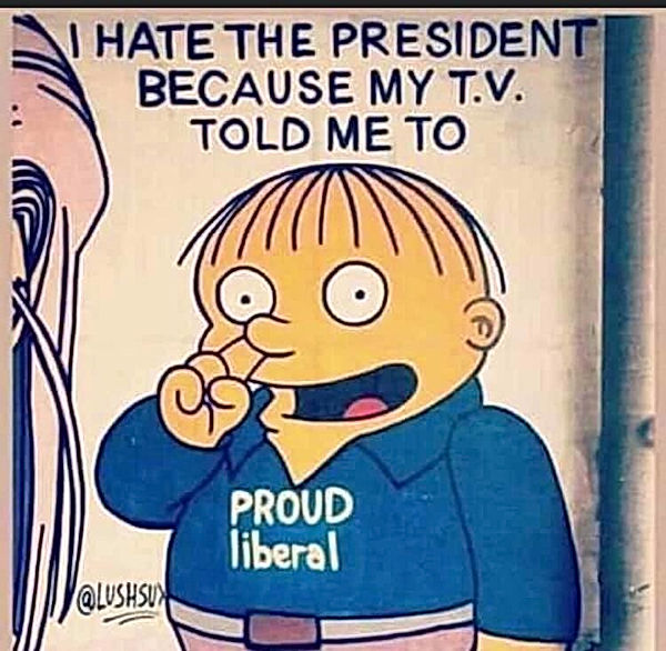 I Hate My President Because the Media To
