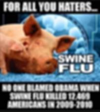 3-20 Swine.png