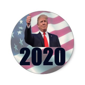 Trump in 2020 Custom  Stickers