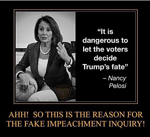 Nancy It's dangerous to Let Voters.jpg