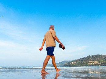 Summer Activities for Seniors in Northern California
