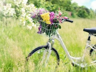 Bicycle Safety Tips for Seniors
