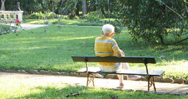 Senior or elderly person sitting on a bench in the summer. Home care.