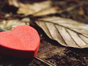 How to Help Seniors Practice Gratitude