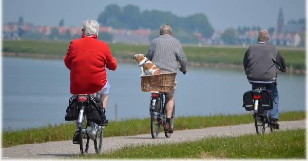 living longer and feeling healthier home caregiving