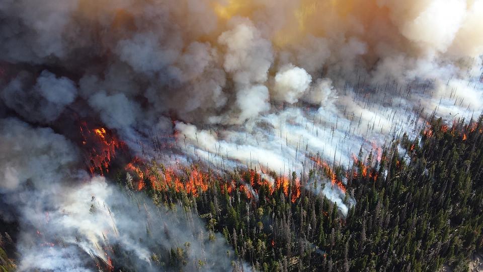 California wildfires, seniors, home caregivers