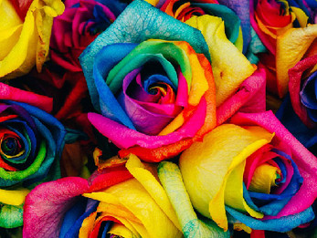5 Ways Caregivers Can Celebrate Pride with LGBT Seniors