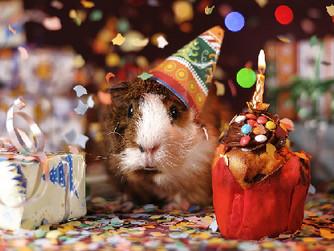 Home Care Tips: Making Birthdays Positive for Seniors