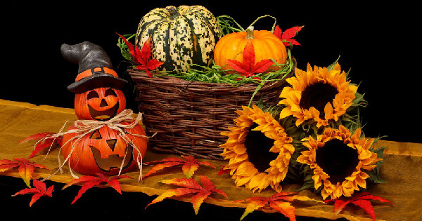 halloween best home care tips, home care California