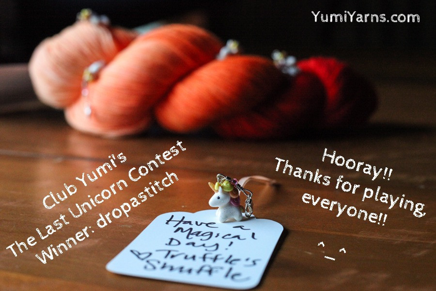Club Yumi's Instagram Contest Winner: dropastitch