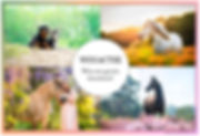 winactiepaint2facebook.jpg