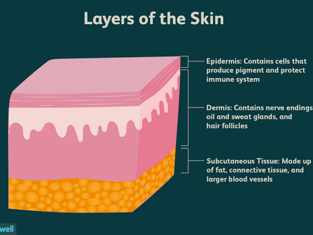 THE SKIN YOU'RE IN