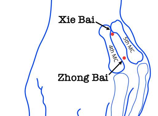 Xie Bai - 22.07