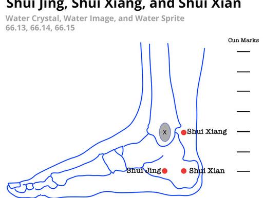 Shui Xian - 66.15