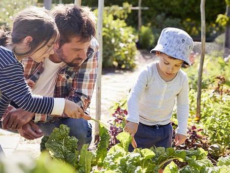 Prochain rendez vous insoumis à Tyrosse : l'environnement, la nature, l'agriculture et l'énergie 