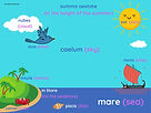 Latin vocabulary for the summer