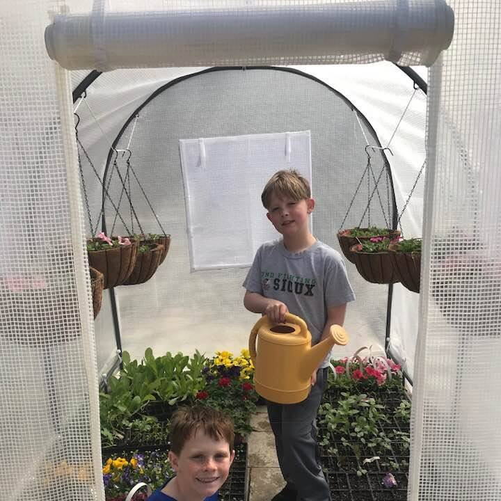 Bought a 6 x 8 greenhouse