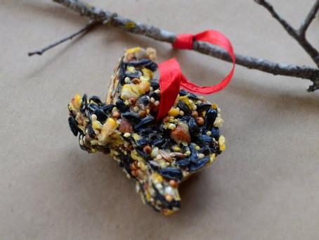 DIY : Bird Seed Ornaments