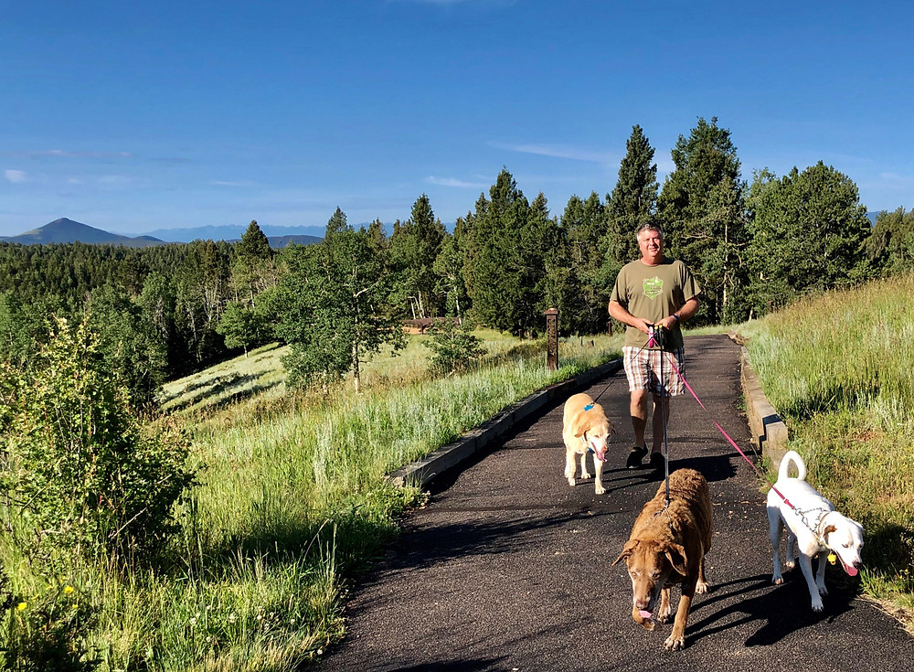Mueller State Park Colorado