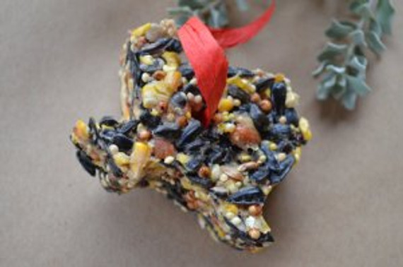 DIY Birdseed Ornaments by Home Style Austin