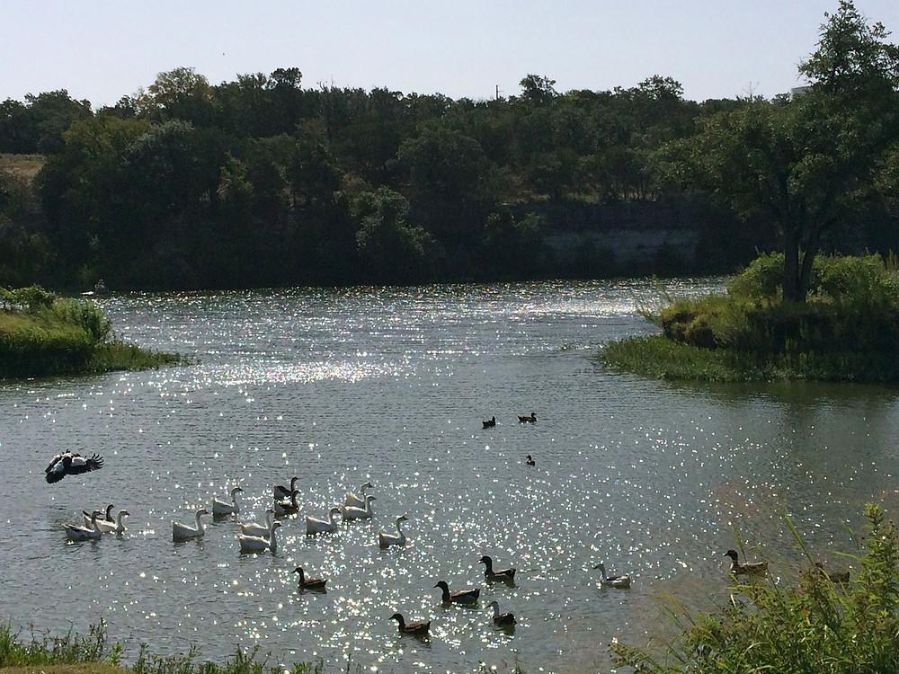 Brushy Creek Regional Trail Twin Creek Lakes