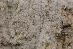 carpet fluff 3 - ECONYL®.jpg