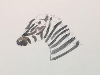 Sepsis: Your Zebras