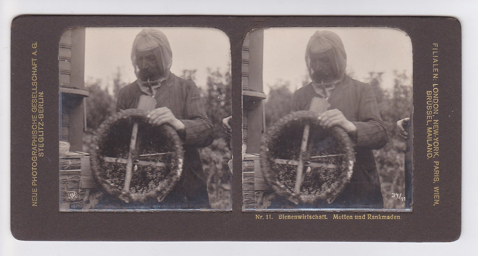 Beekeeping - Complete set of 70 stereoviews