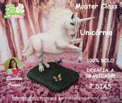 Master Class Unicórnio