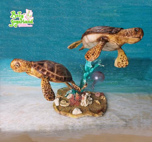 Tartarugas marinhas 1.png