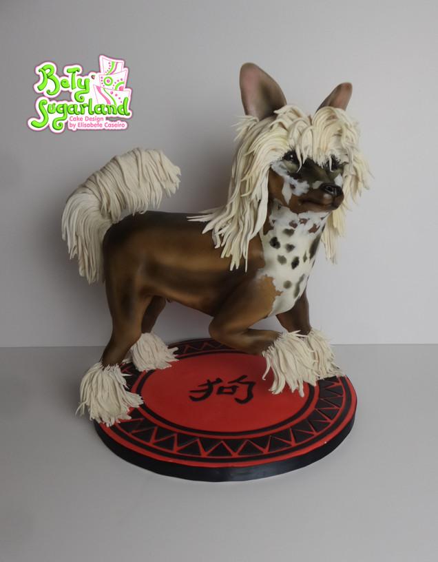 Chinese Crested Dog 1.jpg
