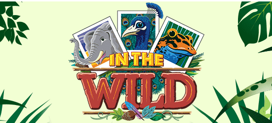 VBS Registration NOW available