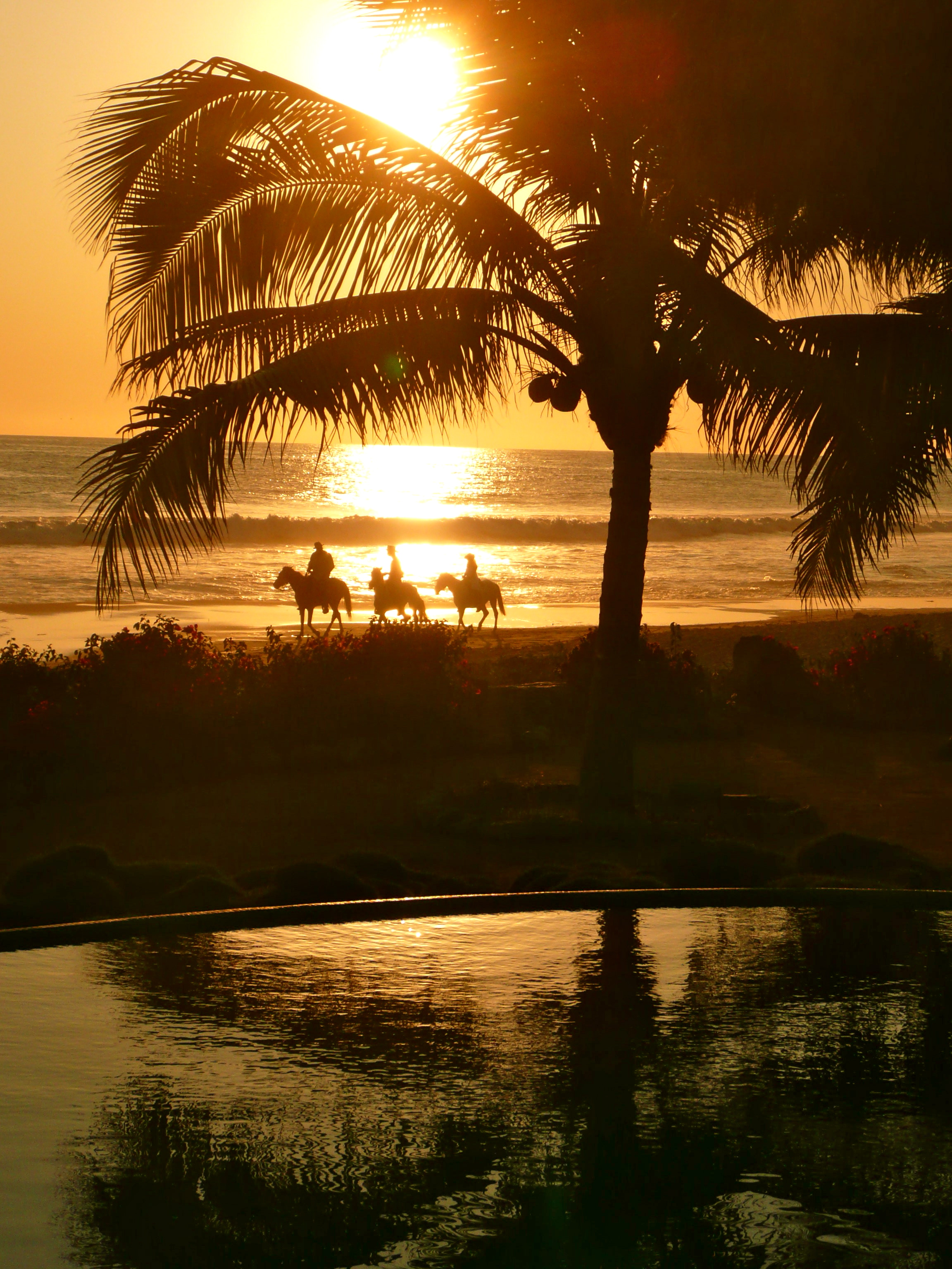 Mexican horse riding on beach