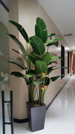 At Silk Forest, our mission is to provide High Quality Artificial Trees and Floral Arrangements at a