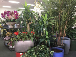 HAND CRAFTED ARTIFICIAL TREES & FLORAL ARRANGEMENTS