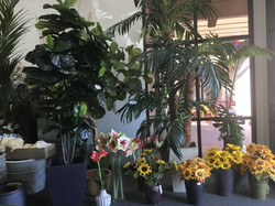 We specialize in designing authentic looking trees and silk flowers.