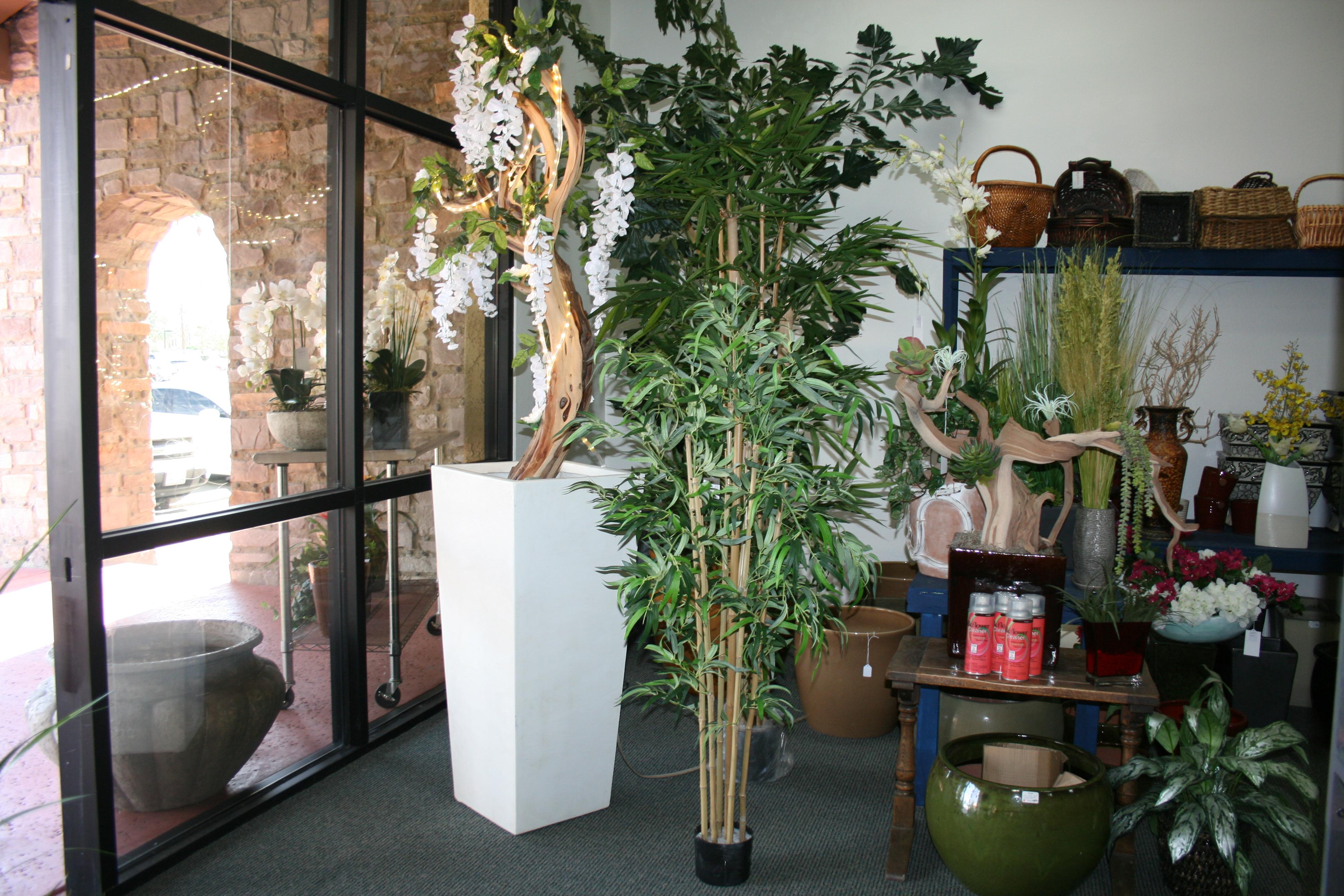 plant dessigns